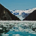 north_sawyer_glacier_tracy_arm